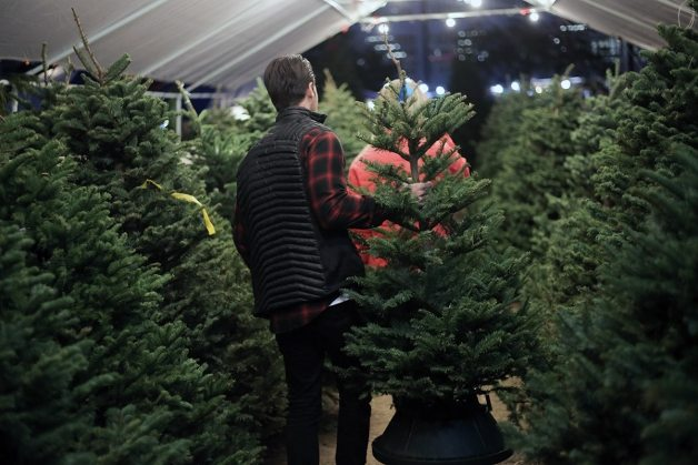 charlie brown christmas tree 3 | by the skinny confidential