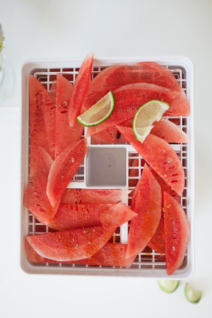 watermelon jerky   by the skinny confidential