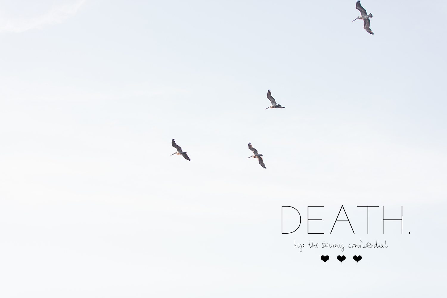 death-the-skinny-confidential-2