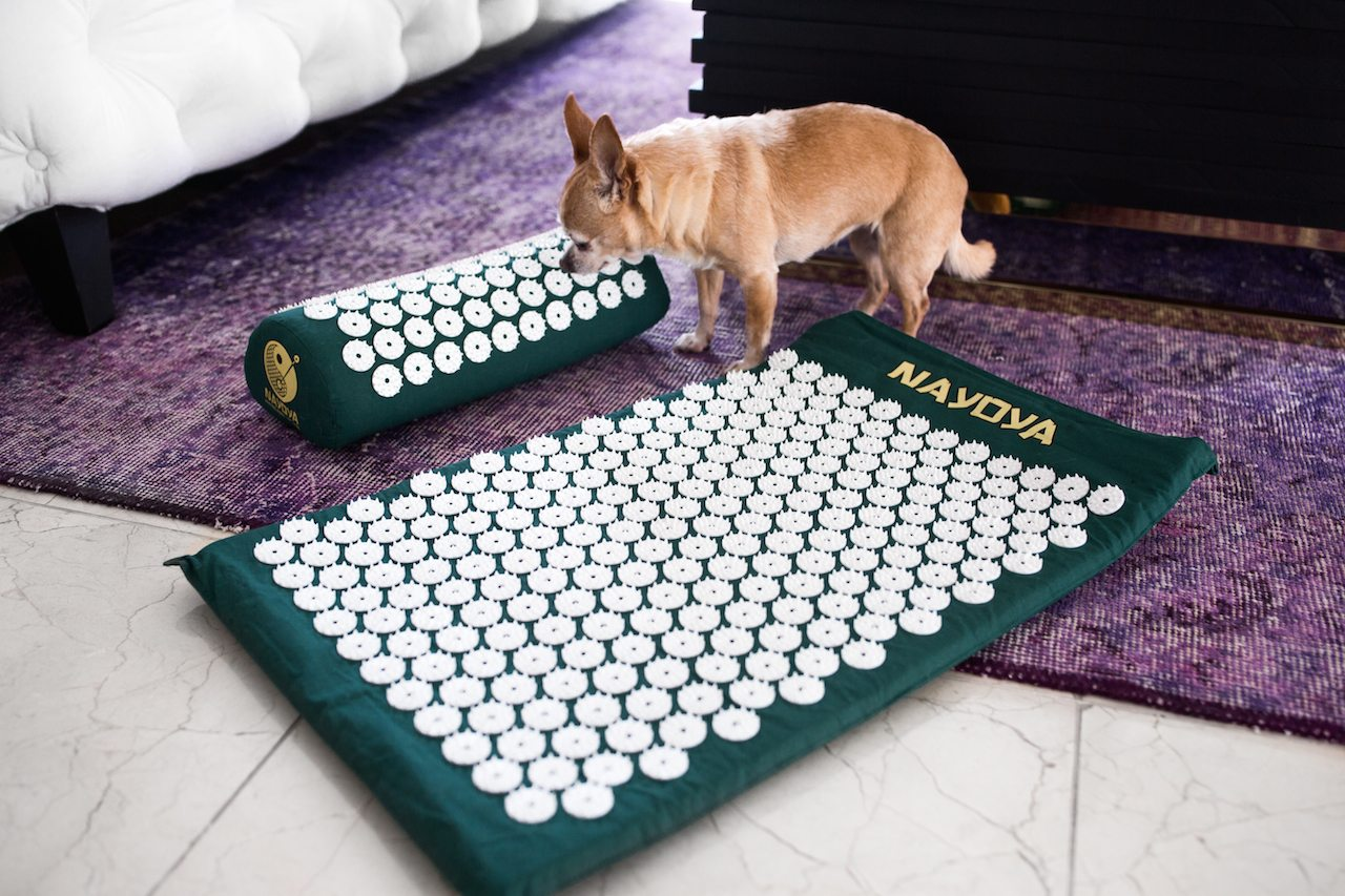 bed of nails acupressure mat   by the skinny confidential