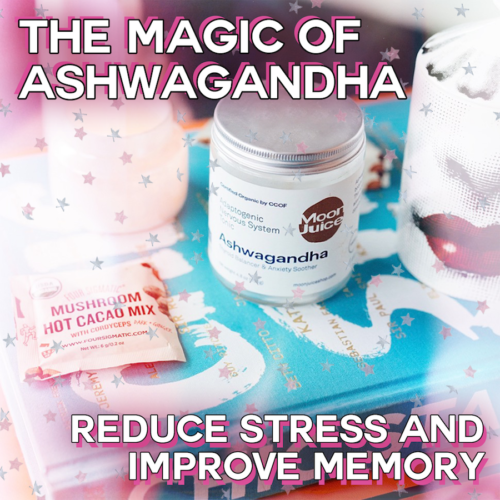The Magic of Ashwagandha: The Herb You Need to Know